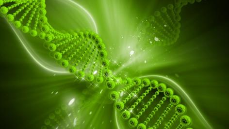 Ruch steruje genami