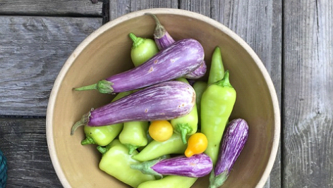 Jesienne dania dla wegetarian. Oto 4 pyszne przepisy do wykorzystania!